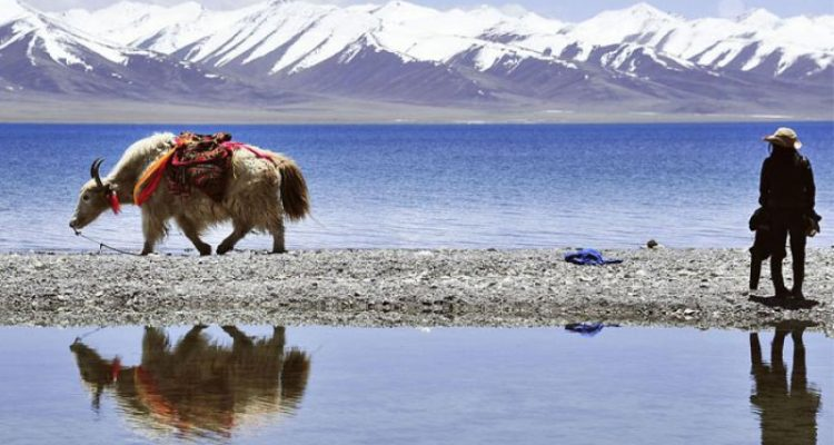 Tibet with Nam-Tsho Lake