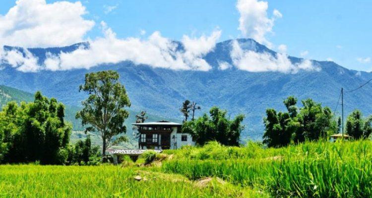 Bhutan Gangtey Gogona trekking