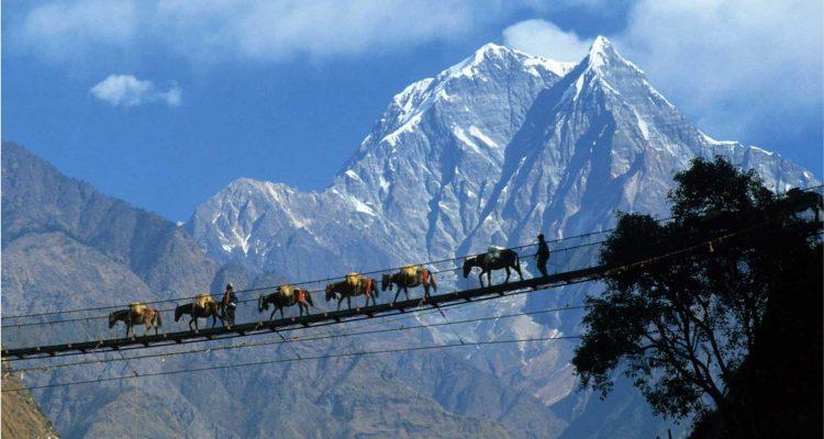 Nilgiri Himalaya