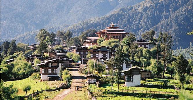 Bhutan Gangtey Gogona Tour and Trekking